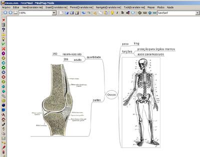 http://portaldoprofessor.mec.gov.br/storage/discovirtual/aulas/1479/imagens/mapaOssos.jpg