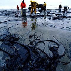 http://portaldoprofessor.mec.gov.br/storage/discovirtual/aulas/1532/imagens/Oil-spill.jpg