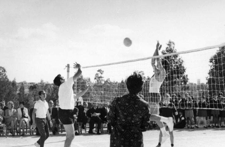 04 - http   www.1969leavers.com photogallery old%20photos Volleyball%201.jpg 2e80536508841