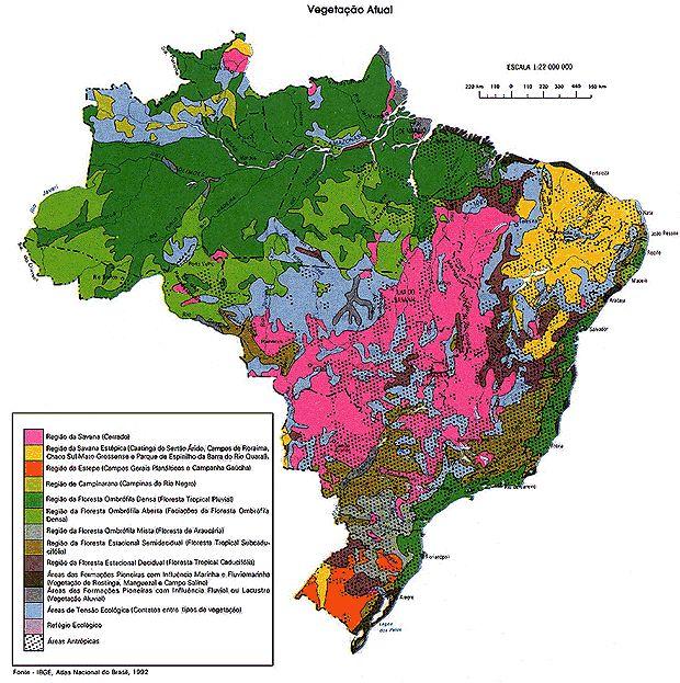 http://portaldoprofessor.mec.gov.br/storage/discovirtual/aulas/1615/imagens/vegetacao_brasil.jpg