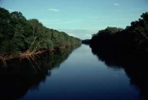 http://portaldoprofessor.mec.gov.br/storage/discovirtual/aulas/1726/imagens/nature-conservancy-roanoke.jpg