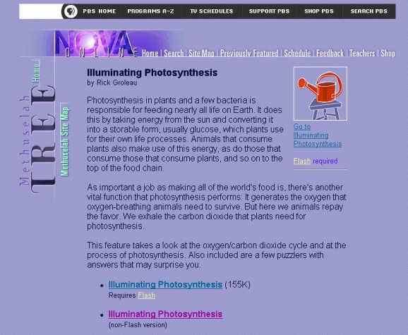 http://portaldoprofessor.mec.gov.br/storage/discovirtual/aulas/1733/imagens/fotossintese1.jpg