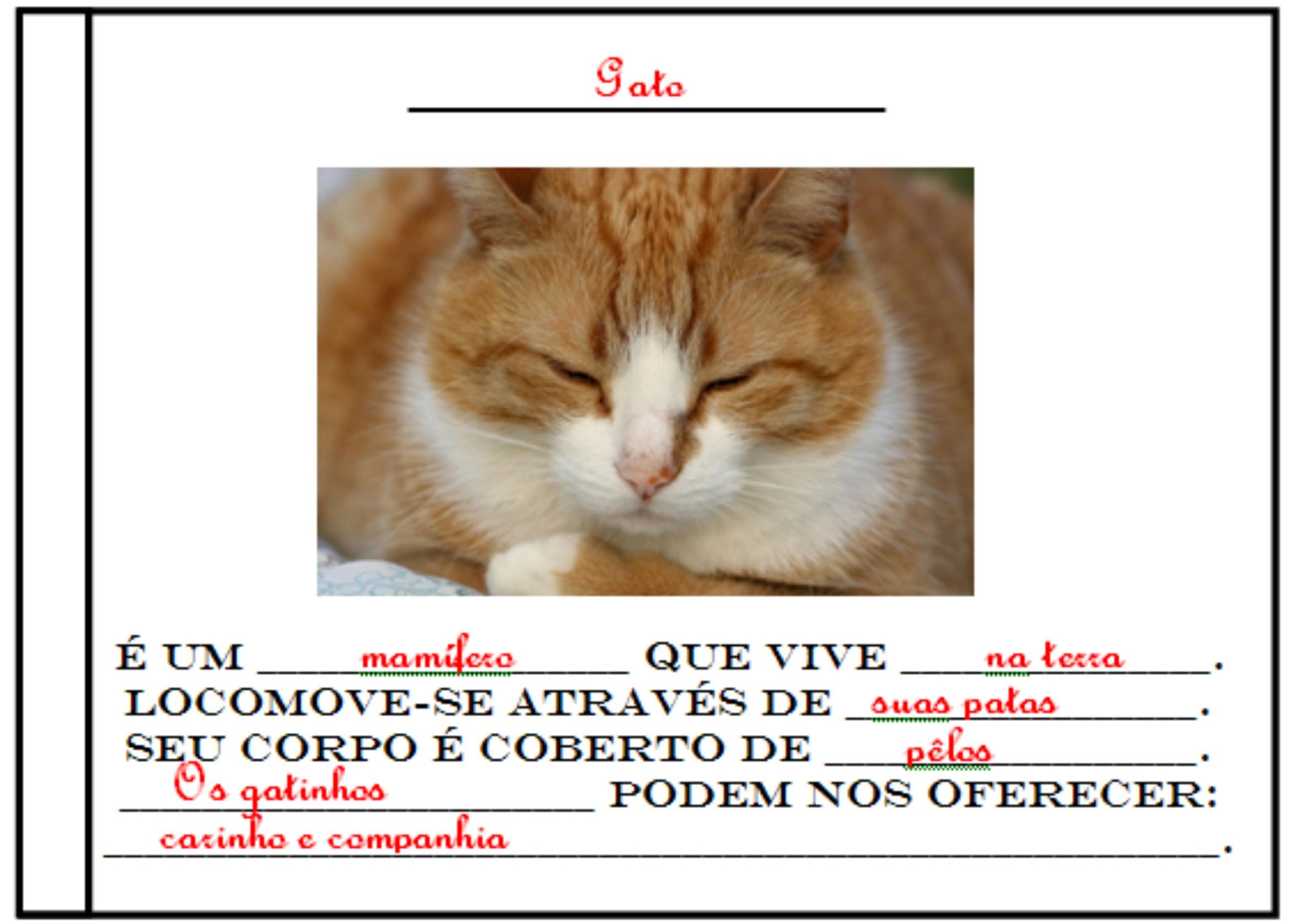 http://portaldoprofessor.mec.gov.br/storage/discovirtual/aulas/529/imagens/deondevemoleite2.jpg