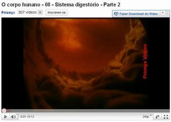 sistema digestorio 6