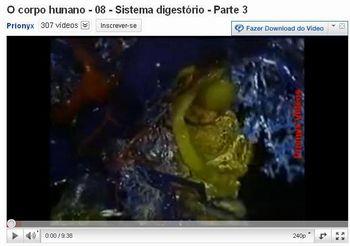 sistema digestorio 7