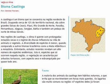 Caatinga 1