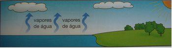vapores 22