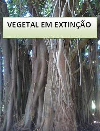 Vegetaisemextincao