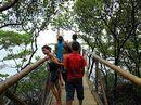 A Estação Ambiental Mangue Pequeno, em Icapuí (CE), foi um dos locais visitados